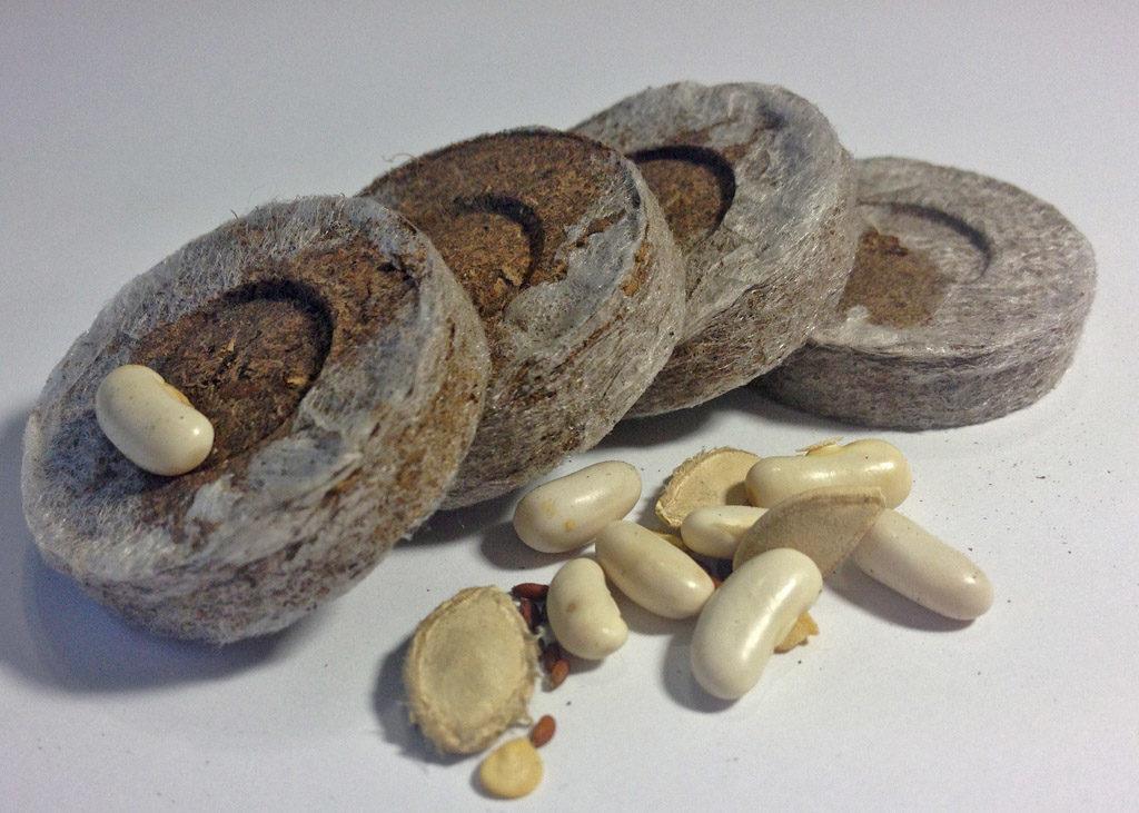 торфяные таблетки семян